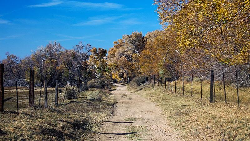 Mojave Narrows