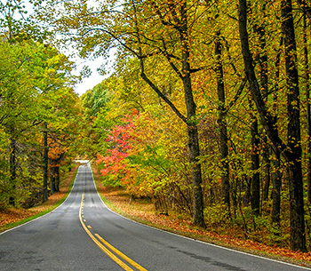 Virginia Back Roads