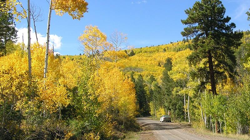 Road to Devil's Backbone near Escalante
