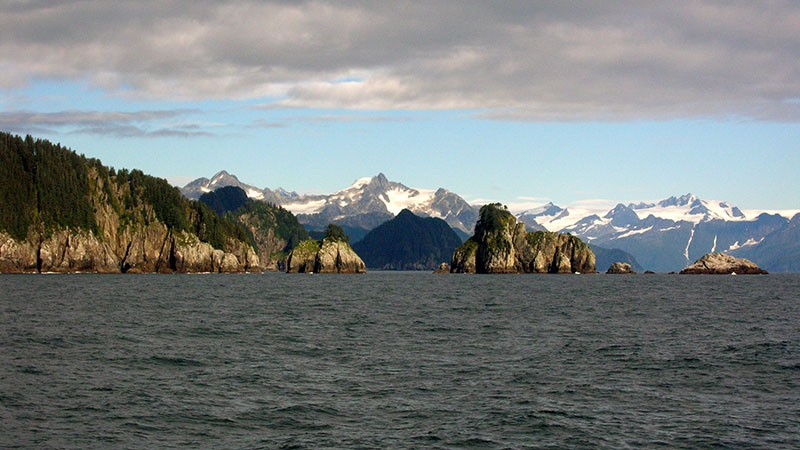 Day Trip to Kenai Fjords National Park