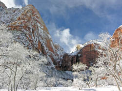 Zion in the Snow