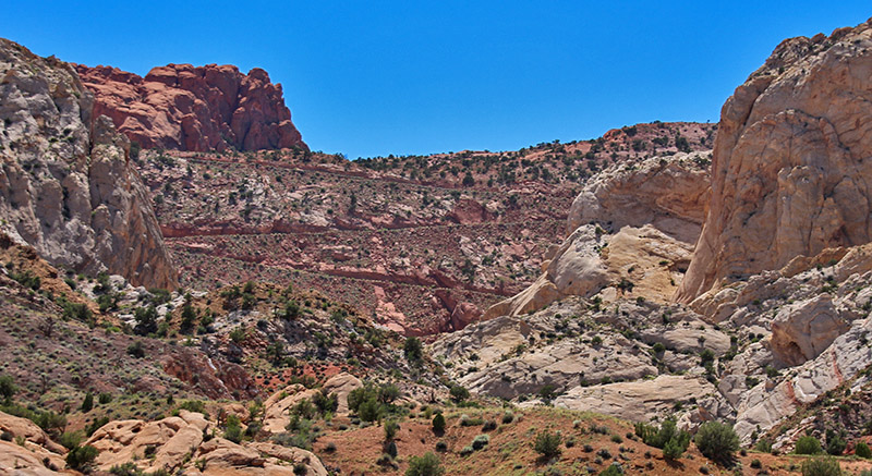 Looking up at the Burr Trail switchbacks