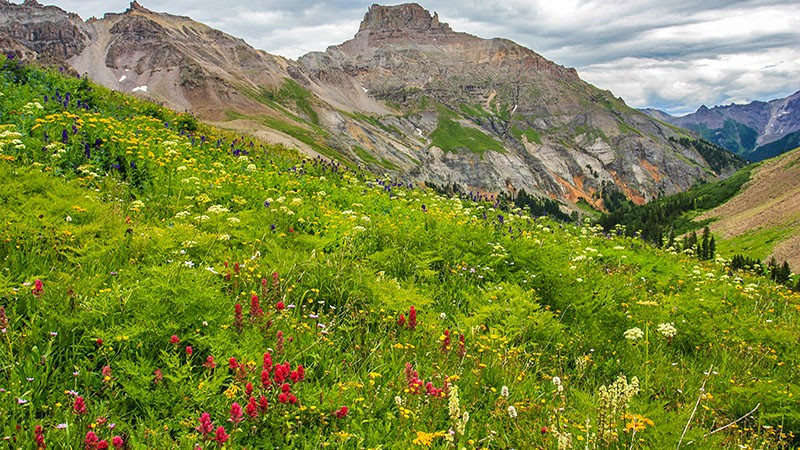 Yankee Boy Basin